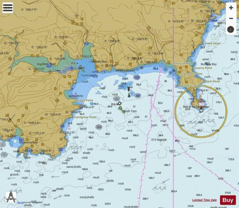 Courtmacsherry Bay Marine Chart - Nautical Charts App