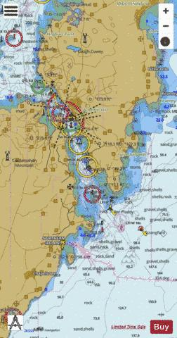 Strangford Narrows Marine Chart - Nautical Charts App
