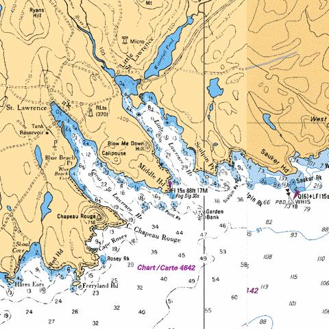 GREAT ST. LAWRENCE HARBOUR Marine Chart - Nautical Charts App