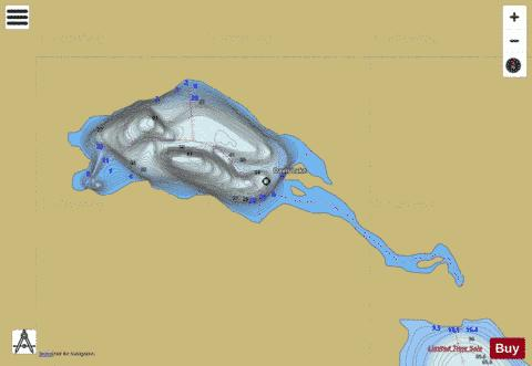 Davis Lake Fishing Map - i-Boating App