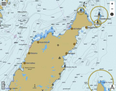 Cape St. Francis to/� Baccalieu Island and/et Heart's Content Marine Chart - Nautical Charts App