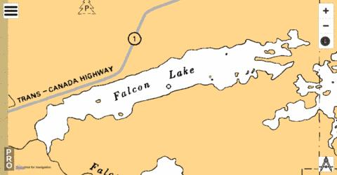 Falcon Lake Fishing Map - i-Boating App