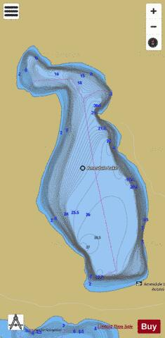 Amesdale Lake Fishing Map - i-Boating App