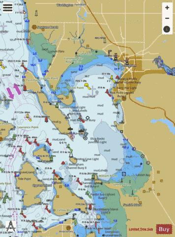 BELLINGHAM BAY Marine Chart - Nautical Charts App