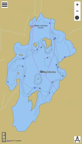 Billings Lake Fishing Map - i-Boating App