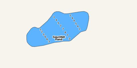 Gauntlet Pond Fishing Map - i-Boating App