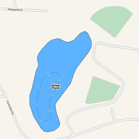 Wilson Pond Fishing Map - i-Boating App